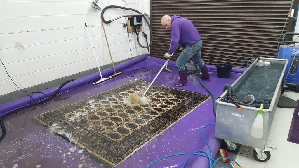 Arcadia Rug Spa deep cleaning a pet stained rug in Cheshire